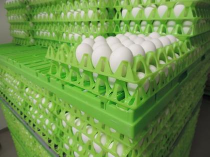 Äggpackeri Halland. Med vårt packeritillstånd kan vi på Järnvirke äggpackeri leverera ägg från frigående höns till gårdsbutiker och torghandlare i Falkenberg, Varberg och hela Halland