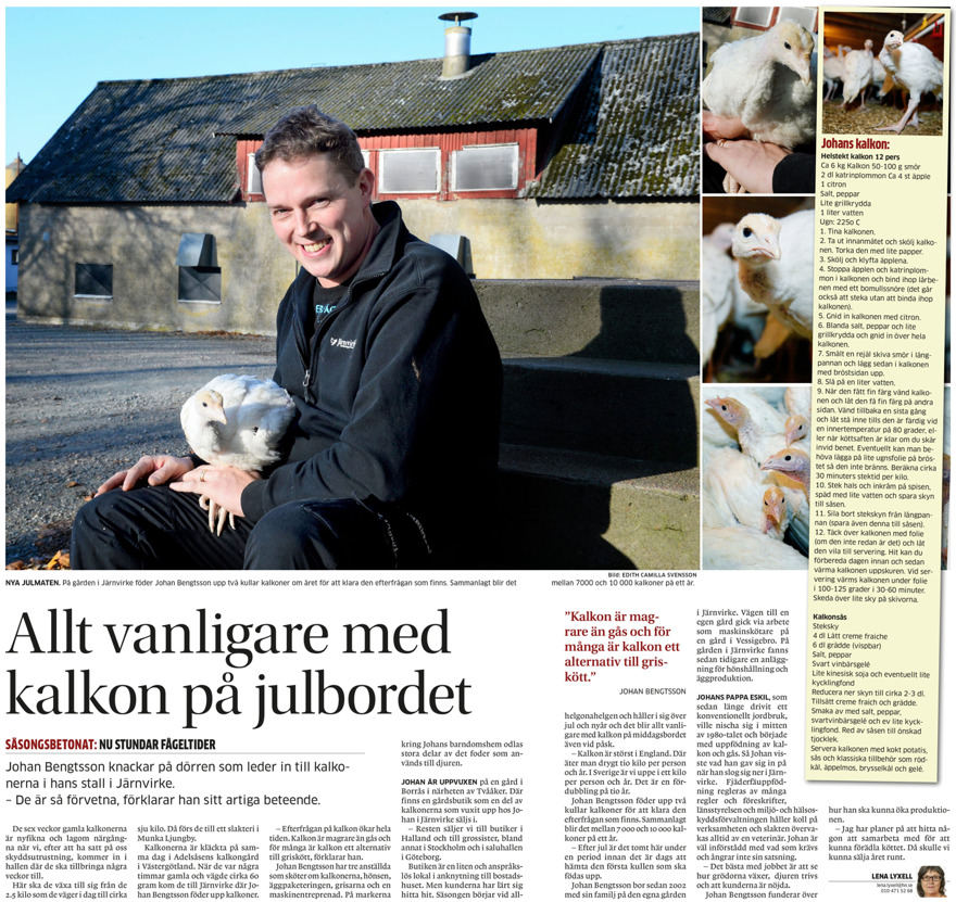 EB Fågel Kalkonfarm - kalkonuppfödning i Borrås mitt i Halland