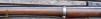 Enfield Pattern 1853 Rifle-Musket