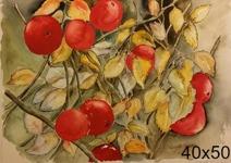 Äppelträd 1.200:-