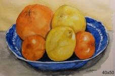 Citrusfrukter 1.500:-