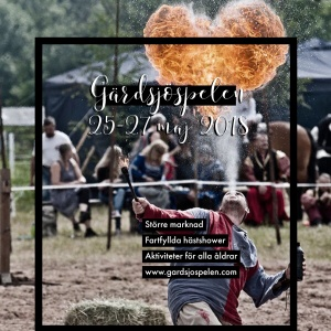 Boka in sista helgen i maj för då gör det populära Gärdsjöspelen comeback, denna gången i vår regi! Foto: G Er Foto