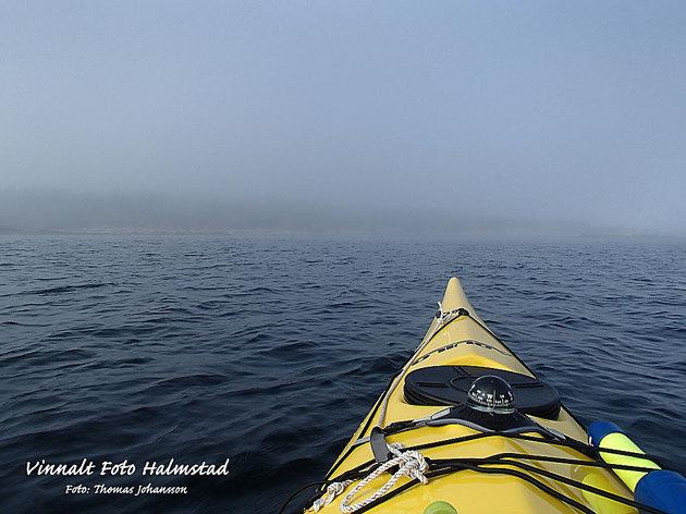 Dimman låg tät när jag paddlade över från Torekov men lättade senare på dagen.