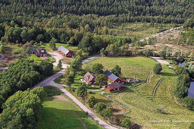 Gården på andra sidan vägen (Vinnalt)  föder upp travhästar och har pastavagnen på Stora Torg Halmstad.