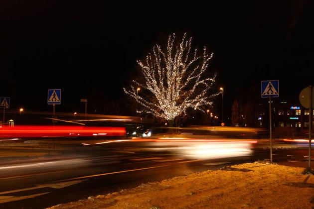 Rondellträdet