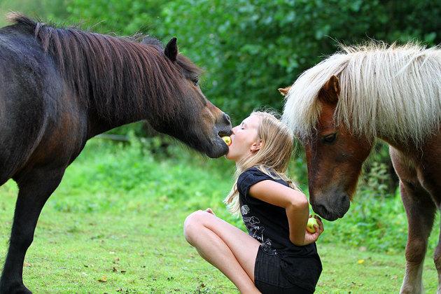 Meningen var någon typ av puss bild...men kolla in hästen vid handen...ska jag eller...