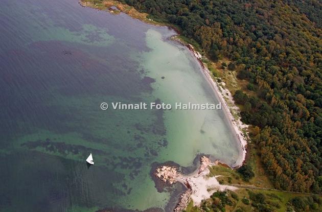 Sandhamn på NO sidan av ön där färjan från Torekov lägger till och en fin ankarplats. Kul med en segelbåt som lämnade ön när vi var där. Tror det är en Comfortina och ditt segelnummer är 39. Ser du detta har jag lite hyvsade närbilder på dig.