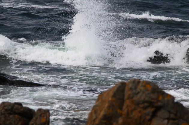 Bilden är från samma dag...en ganska taggig kust!1