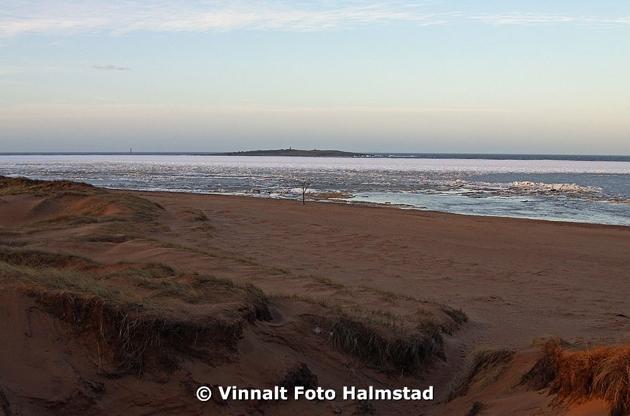 Bilden är från Tylösand idag och det tar nog ett tag till innan isen släpper.