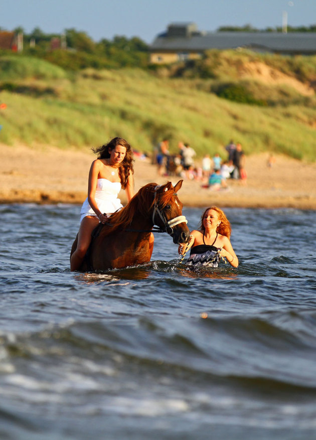 """Vissa problem att """"starta hästen"""" men som ni ser rådde inga tveksamheter att gå ut i vattnet!!"""