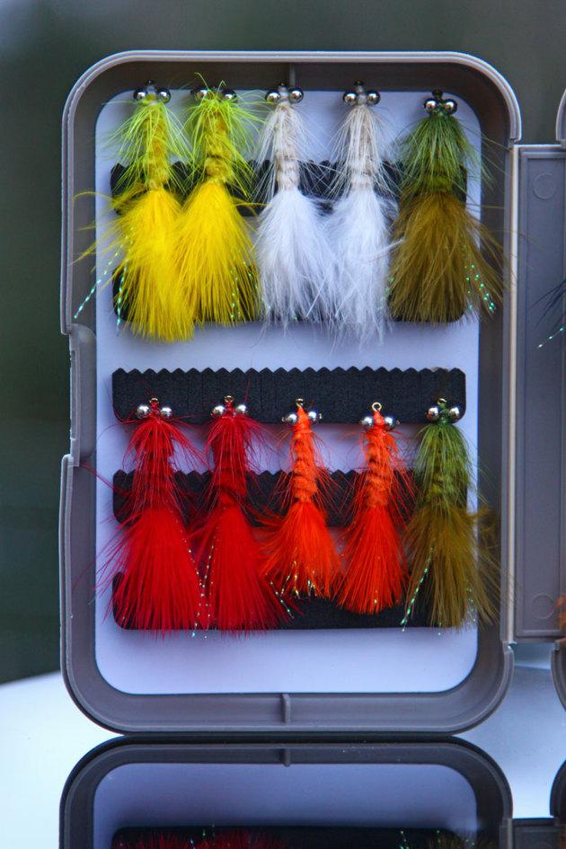 Kanske inte dessa till Regnbåge som fiskas här??