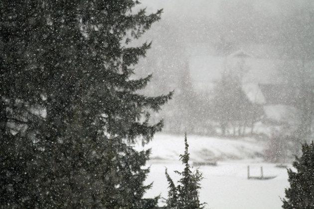 Bilden tog jag nyss...min närmaste grannes hustak syns knappt i snön...hemma nu?? en nackspärr får även en i övrigt  rastlös individ att hålla sig jä...lugn