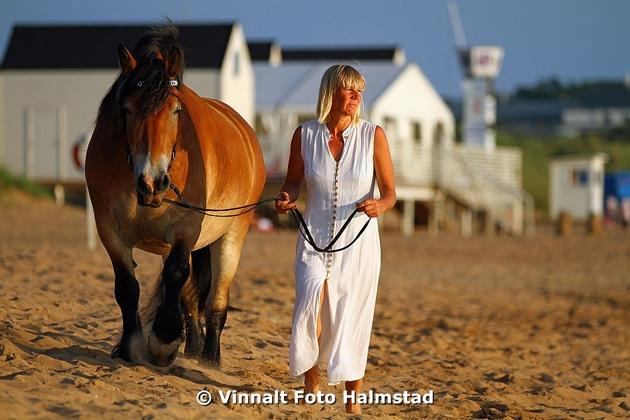 Reklam bilder som jag plåtade ute i Tylösand och ett porträtt på en hästtjej