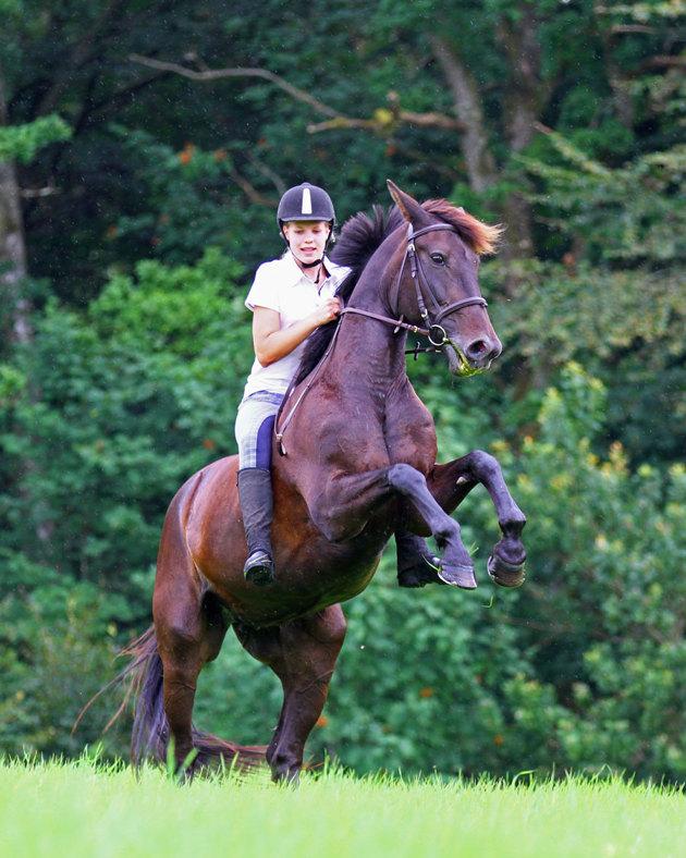 """Den andra tjejen drog lite i """"skotlinorna"""" så hästen stegrade!! tuffa tjejer bägge två!!"""