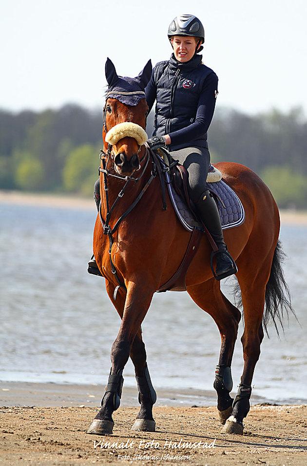 Brukar ta en stund innan hästarna vågar sig ut i vattnet...