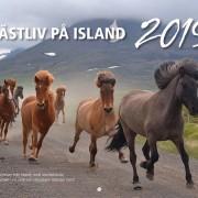 Kalender 2019 Islandshästar