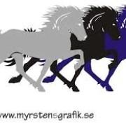 Globus Islandshäst dekaler
