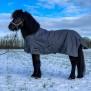 EQUES fodrat vintertäcke - Designat till Islandshästen!