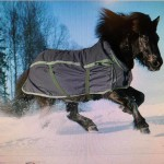 BOETT Smedby vintertäcke