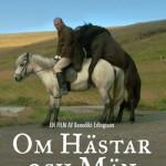 DVD Om Hästar och Män