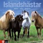 BOK Islandshästar