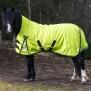 GLOBUS Regntäcke Marie - Hitta din häst ute i hagen!