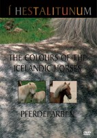 DVD The colours of the Icelandic Horses