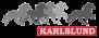 KARLSLUND filt med Islandshästmotiv