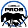 PROB Paket (Deo + Tjärschampo + Olja))