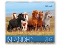 Väggkalender Edition Boiselle 2021 - JULKLAPPSTIPS!