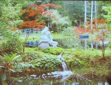 Kärlekens trädgård