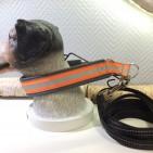 Reflex set 350:- Valfritt reflexhalsband med reflex koppel