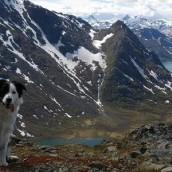 På en topp i Jotunheimen