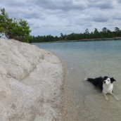 Ett dopp i blå lagunen!