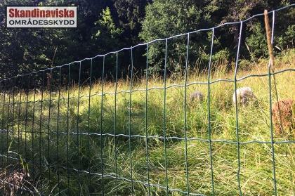 Trädgårdsstängsel Eurofence