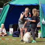 Twix Calisto Toffee vinner Barn med Hund med lill-matte Elin. Kalmar 29 juli 2017. Domare Vilma Rydstedt.