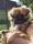 Hanna Esslex Brown Eyed Girl Augusti 2020