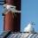 Common Gull and Herring Gull - Fiskmås och Gråtrut