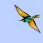European Bee-eater - Biätare