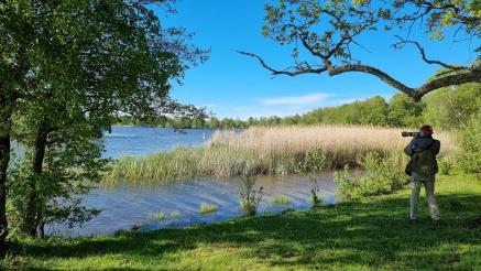 Klosterholmen, Hornsjön
