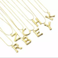 Bamboo Golden Letter Necklace