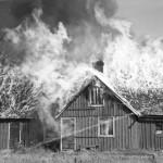 Krokagård 1951