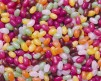 JELLY BEANS - 2,5 kg