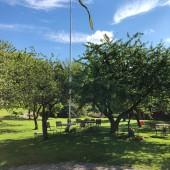 I vår trädgård finns trädgårdsmöbler och fruktträd.