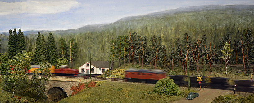 Godståg och malmtåg