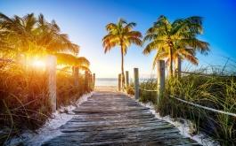 Florida-Karibien enligt program - Del i dubbelhytt 2 nätter i Miami 9 nätter kryssning