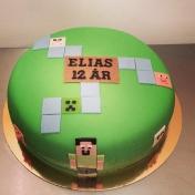 Elias 12år, mincraft