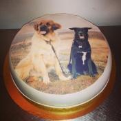 Fototårta hundar
