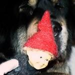 Ruffa and Santa