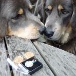 sisters looking at Aquilas medal